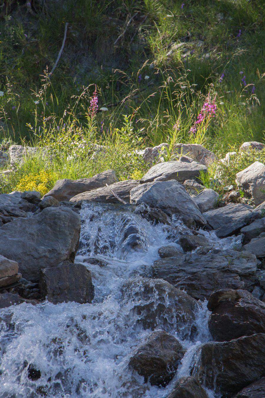 Water stream near Villardamond, 2017